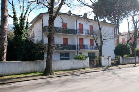 vertically chalet with large garden - Lido degli Estensi - Apartment