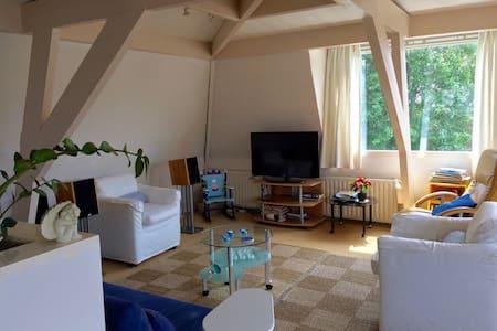 Penthouse vlakbij NS en binnenstad. - 's-Hertogenbosch - Appartement