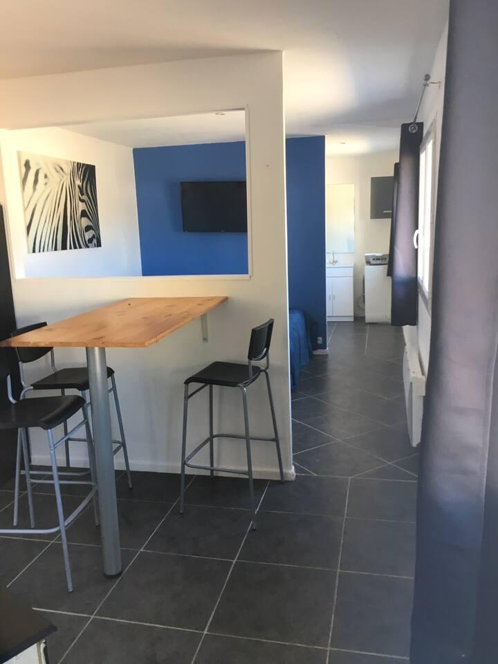 Appartement open-Space 33m2 et Terrasse de 8m2