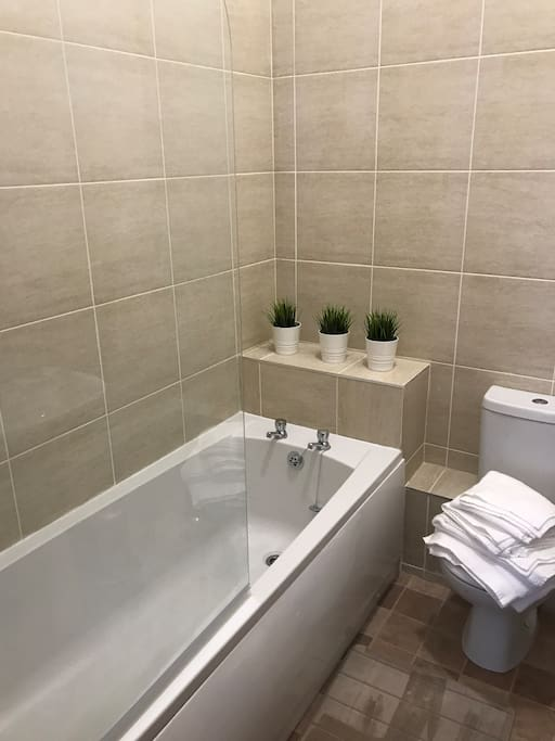 Bathroom (Pic of the Hoste - new pics of finished apartment to follow)