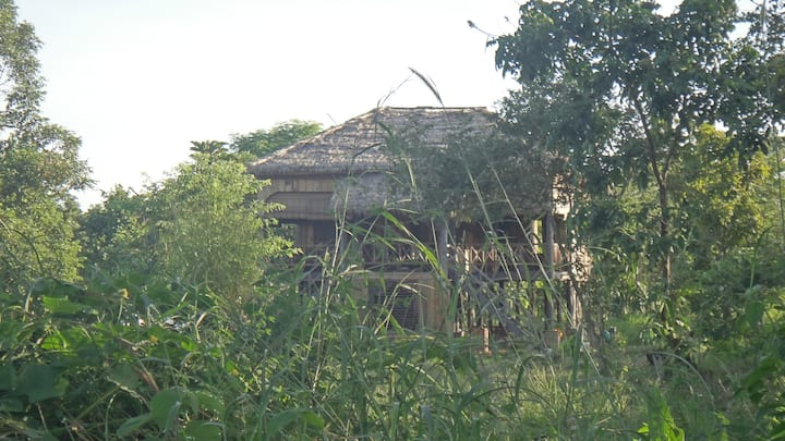 Asana Lodge Beng Mealea - Herbal Tea Plantation