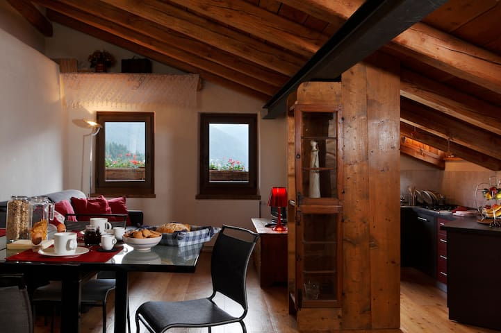 Dolomites typical house great view Apartment Noni