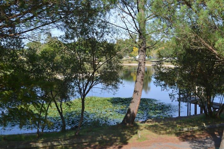 Joli T2 en duplex avec terrasse donnant sur le lac