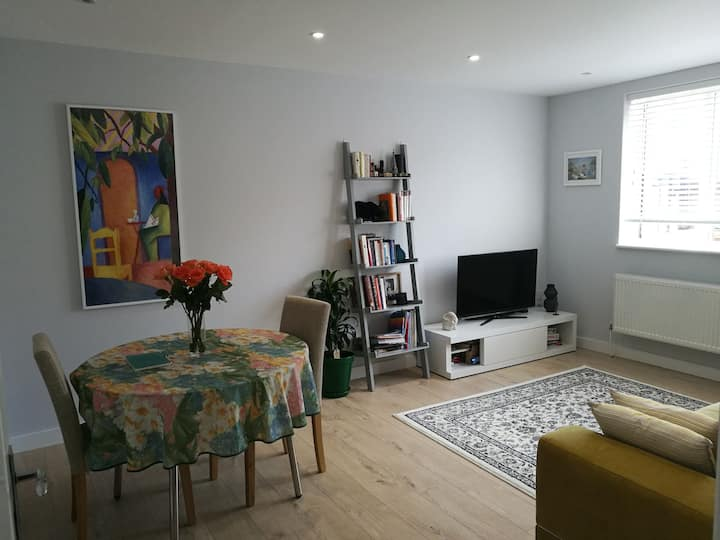 1 large bed flat, 35 minutes from Central London