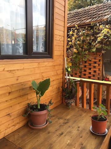 Marinas guest house Ananuri  Kotrj