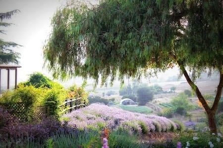 Lavender Farm Provincial Guest House - Valley Center