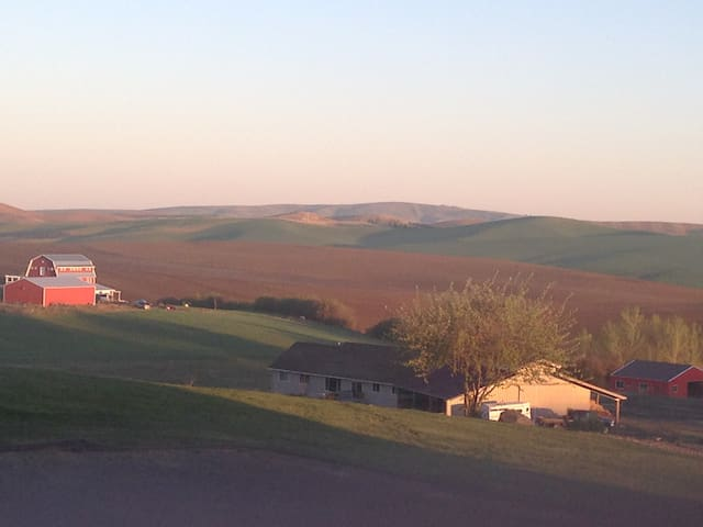 Palouse Views Guest House - Pullman - Outro