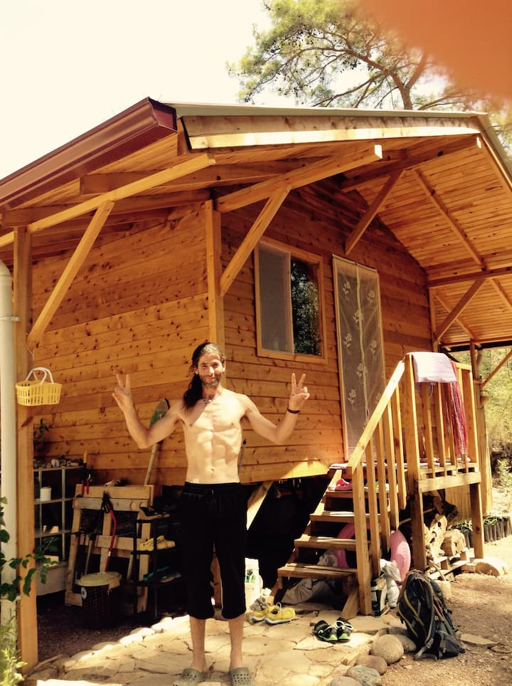 Eco bungalow in pine forest
