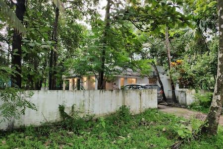 Vibes Homestay in Kochi