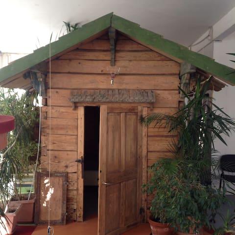 Alte Waldhütte in Künstlerloft - Müllheim