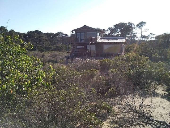 Cabaña, en medio de la naturaleza frente al mar