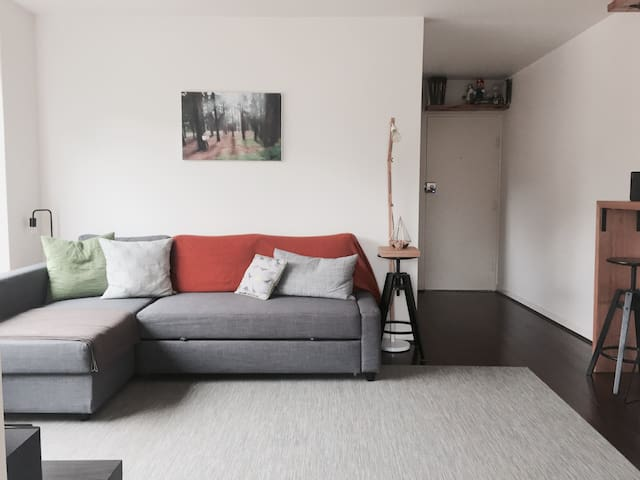 1 bedroom apartment Flemington - Flemington - Lakás