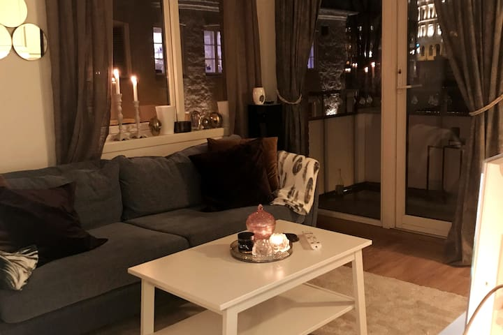 Cozy 1 bedroom apartment in central Oslo