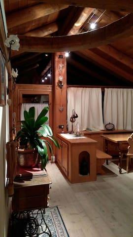 Mansarda  luminosa-San Vito di Cadore-Cortina d'A - Serdes - Apartamento