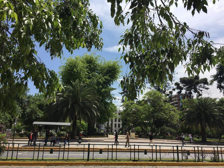 plaza ñuñoa, a pasos  del departamento