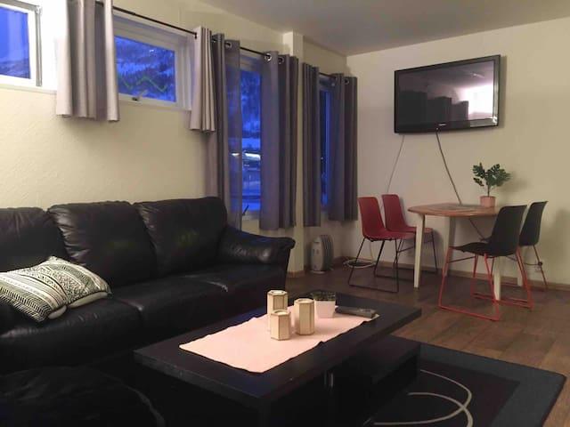 Lyngenfjord Aurora borealis hotell apartment nr4