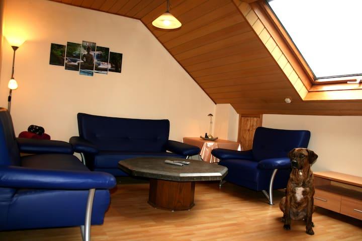 """Urlaub mit dem Hund:Ferienwohnung """"Schlossblick"""" - Diebach - Apartament"""