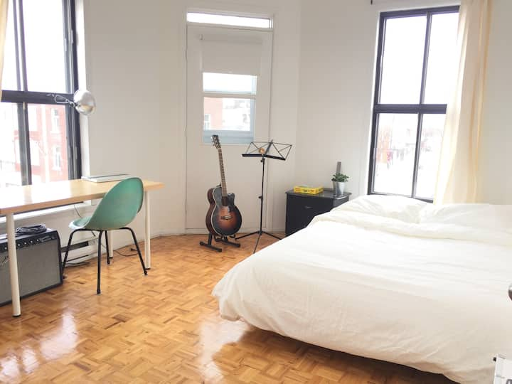 Large cozy room in Little Italy/Mile Ex