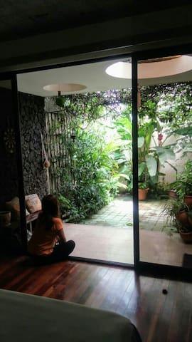 Admirando las plantas y los pajaritos que nos visitan.