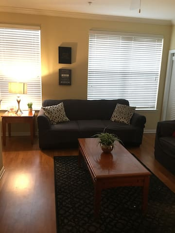 Cozy entire 2 bedroom 2 bathroom apartment!