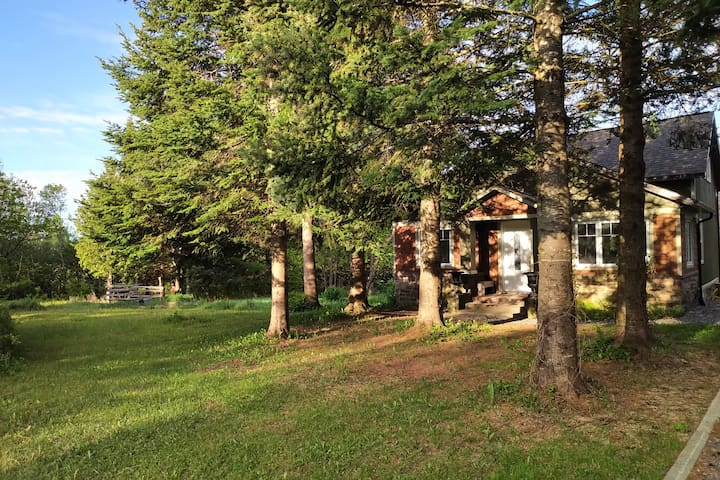 Large private yard backing onto an old orchard and woods.