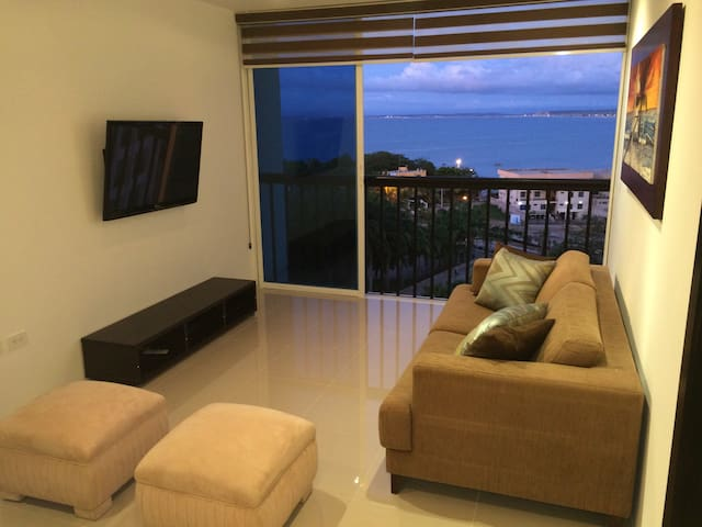 Ocean view punta centinela apartment, 2 rooms