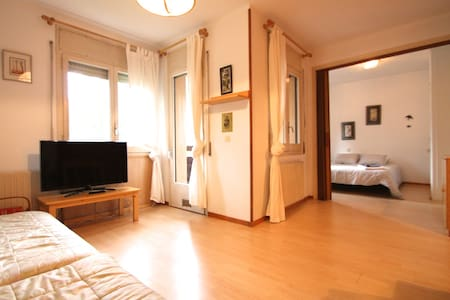 Spacious apartment, center Massana - La Massana - Byt