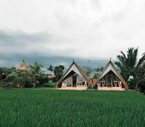 Padi Shack-Stunning Rice Field View in Ubud