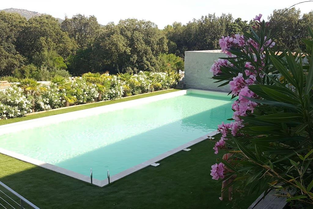 T5 standing pr s du port vue mer avec piscine apartments for Residence porto vecchio avec piscine
