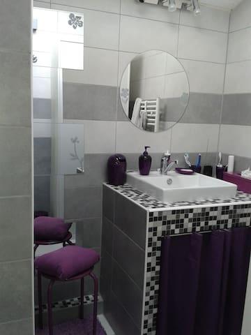 La salle de bains avec douche et toilettes
