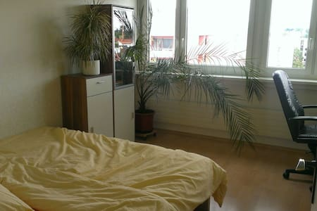 Quiet room with view near Daimler - Appartement