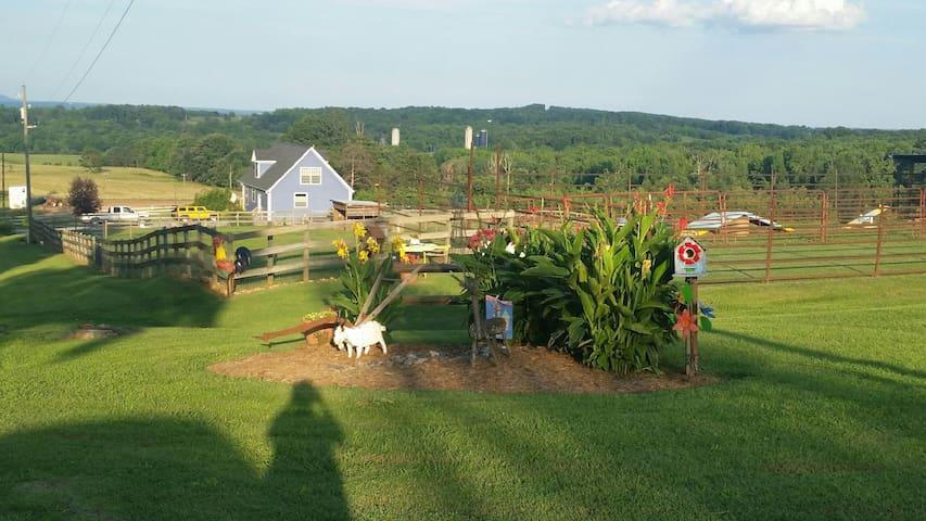 Relaxing Farm Retreat