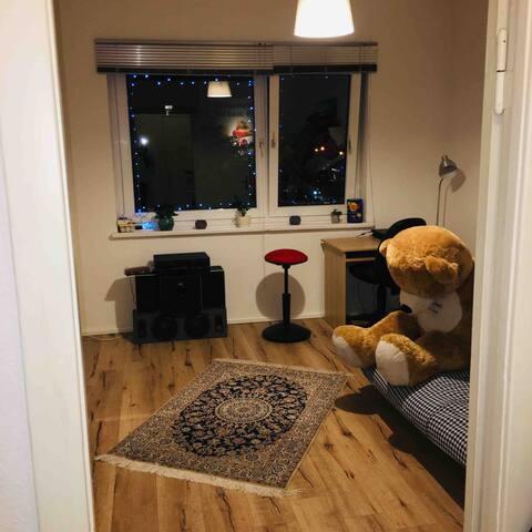 Schöne gemütliche ein Zimmer WohnungHerz der Stadt