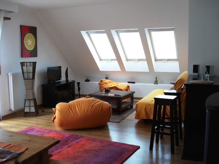 Gîte appartement Le Bambou