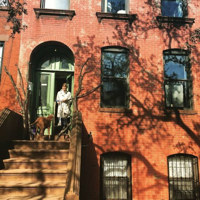 Our front Brooklyn Stoop