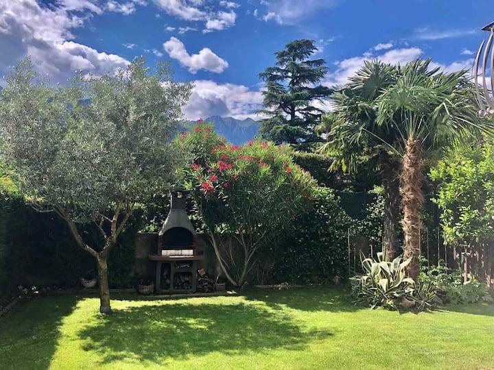 Olive Garden,WiFi,Giardino & BBQ(022006-AT-670661)