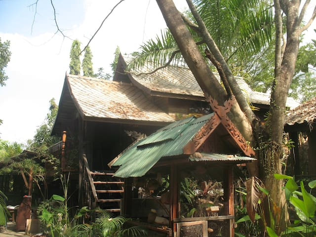 teak house in a topical garden