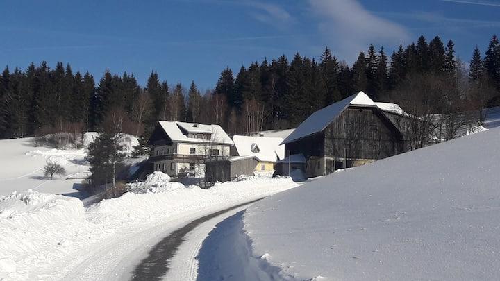 Ferienwohnungen Gaisschlager Wohnung 2