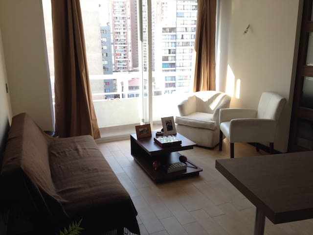 Apartment in civic neighborhood of Santiago - Santiago