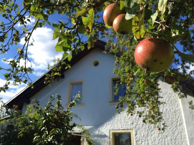 Zu Hause im Obstgarten
