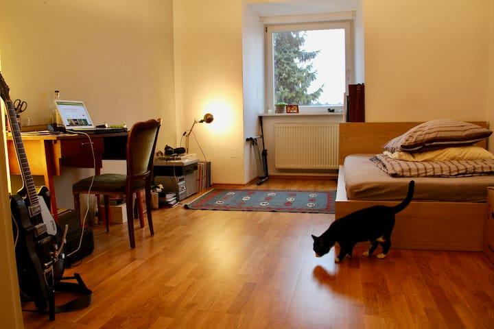 Big, comfortable room near Hirschgarten - Munic