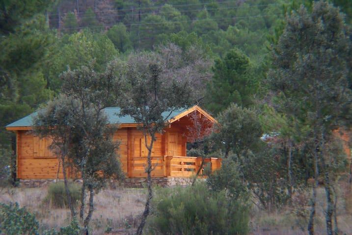Cabañas Llano los Conejos. Cabaña Pequeña 1