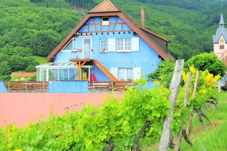 Alsace Winemaker home for wine and nature lovers - Reichsfeld - Rivitalo