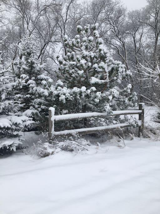 Spectacular winter activities abound!