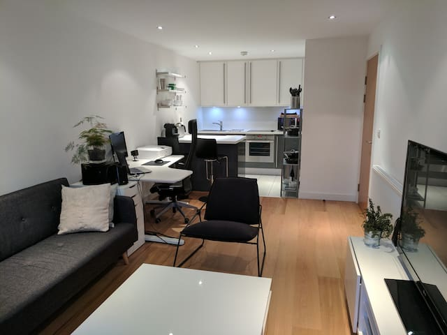 Modern apartment ideal with great transport links - London - Apartment