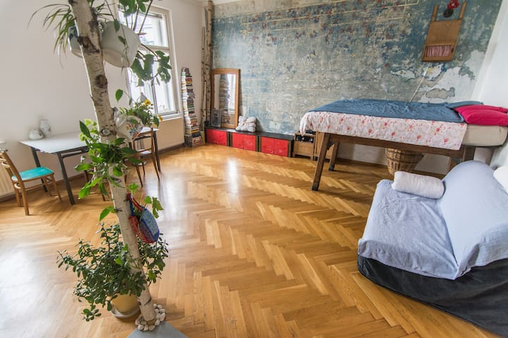 Cozy and bright hipster apartment in city center