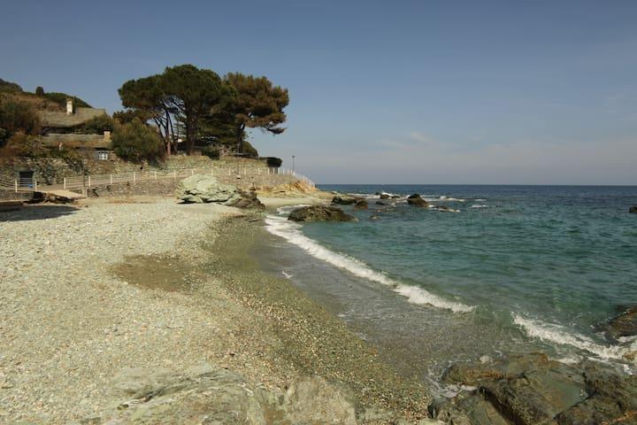 Studio à 100m de la plage - San-Martino-di-Lota - Daire