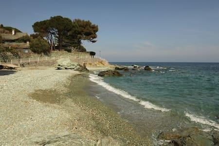 Studio à 100m de la plage - San-Martino-di-Lota - Wohnung