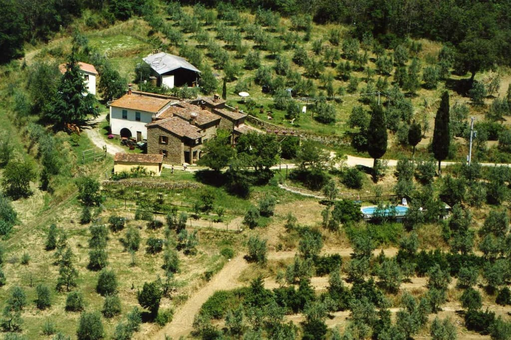 Aerial view over the property