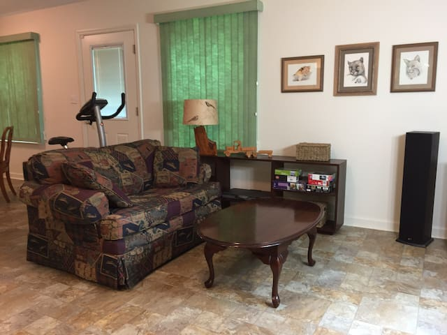 Living room with loveseat sofa bed
